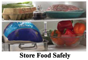 Store Food Safely