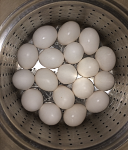 18 eggs in steamer basket